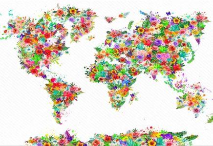 Plantas y mapas